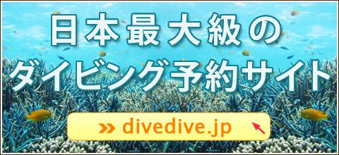 日本最大級のダイビング予約サイト「divedive.jp」