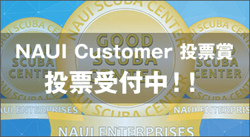 NAUI Customer投票賞投票受付中!!