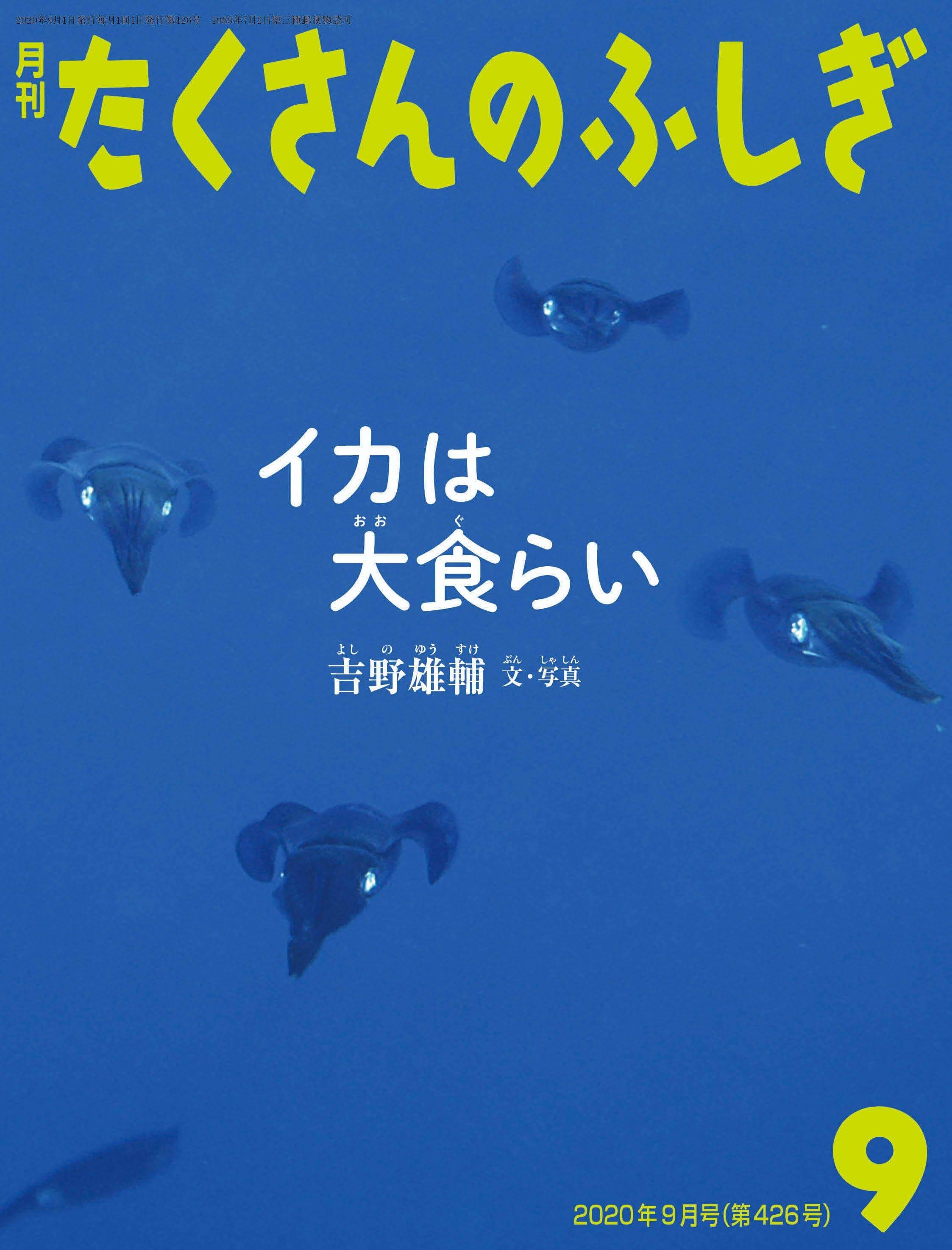 吉野雄輔 氏 たくさんのふしぎ9月号「イカは大食らい」のご案内