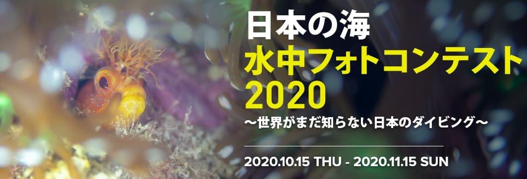 日本政府観光局が主催する「日本の海」水中フォトコンテスト2020を開催のご案内