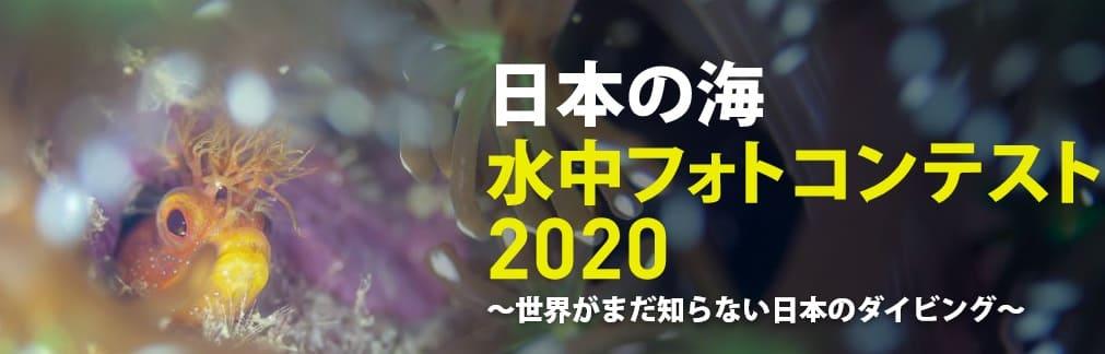 「日本の海」水中フォトコンテスト結果報告