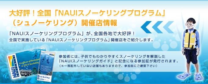 スノーケリングプログラム開催店情報