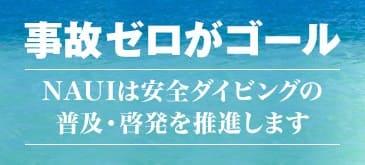 安全に海を楽しむために